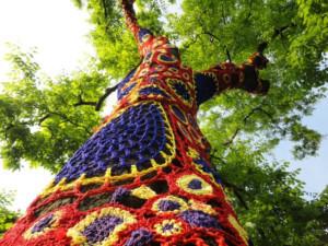 Art Installation In Bindy Bazaar Woods To Open To Public On June 29