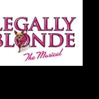 Marcus Center to Host Girl Scout Sleepover in Conjunction w/ LEGALLY BLONDE, 4/16