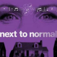 NEXT TO NORMAL's Road to Bdwy Explored in Variety