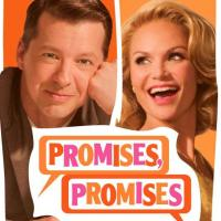 First PROMISES, PROMISES Artwork Revealed as American Express Pre-Sale Begins