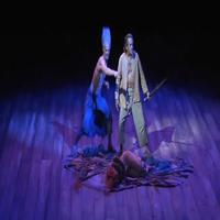 VIDEO: The Old Globe Presents THE TEMPEST