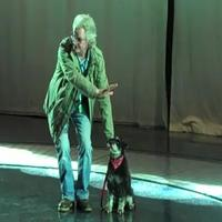 THE WIZARD OF OZ BLOG: Training Toto!