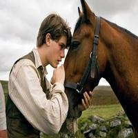 STAGE TUBE: First Look at Spielberg's WAR HORSE Film!
