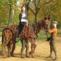 Photo Flash: WAR HORSE Launchs Olympia Horse Show in Hyde Park