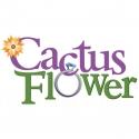 Meet the Cast of CACTUS FLOWER Day 4: John Herrera