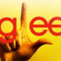 GLEE Recap: Season 2, Episode 8 - Furt
