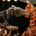 Previews Begin Tomorrow for WAR HORSE!