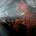Photo Flash: WAR HORSE at LCT - First Production Shots
