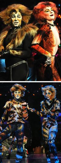 BWW_Reviews_CATS_Leap_For_Musical_Theatre_Wests_Energetic_Revival_20010101