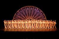 La-Lnea-del-Coro-A-Chorus-Line-concluye-su-temporada-con-un-Gran-Final-20010101