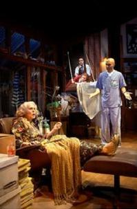 Stage-review-The-Last-Act-of-Lilka-Kadison-20010101