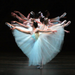 ABT Announces 2011 Spring Season at the Met