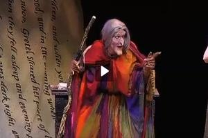 STAGE TUBE: Rachel York Stars in INTO THE WOODS