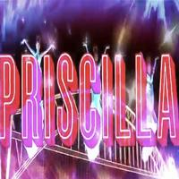 STAGE TUBE: Bette Midler Voices New PRISCILLA QUEEN OF THE DESERT Commercial!