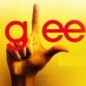 GLEE: Season 3, Episode 3, Asian F
