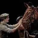 Andrew Durand, Leah Hofmann, et al. Join Cast of WAR HORSE Tonight