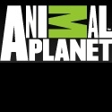 Animal Planet's 'Call of the Wildman' Set to Premiere 11/6