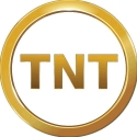 TNT Greenlights 'Patricia Cornwell's Hornet's Nest' With Sherry Stringfield and Virginia Madsen