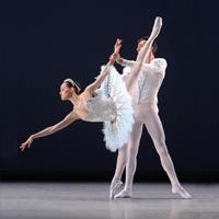 The-Suzanne-Farrell-Ballet-Makes-Joyce-Debut-20010101
