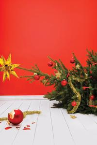 Northlight Theatre Presents SEASON'S GREETINGS 11/11-12/18