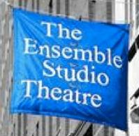 Ensemble-Studio-Theatre-and-the-Alfred-P-Sloan-Foundation-Announce-2012-New-Play-Commissions-20010101