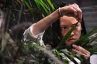 Jim Findlay's Botanica Opens at 3LD 1/28