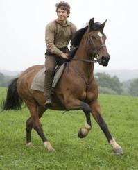 Review-Roundup-WAR-HORSE-Hits-the-Silver-Screen-20010101