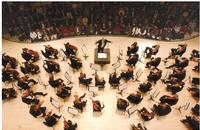 Atlanta-Symphony-to-Celebrate-20th-Anniversary-of-A-KING-CELEBRATION-Concert-20010101