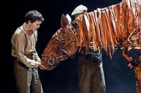 Photo-Coverage-First-Look-at-WAR-HORSE-Canadian-Cast-20000101
