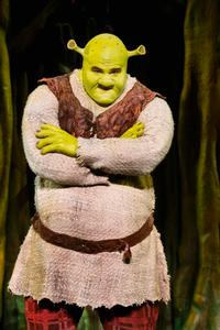 BWW-Reviews-SHREK-THE-MUSICAL-is-a-gas-a-Providence-Performing-Arts-Center-20010101