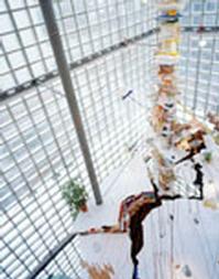 US-Pavilion-at-55th-International-Art-Exhibition-La-Biennale-di-Venezia-To-Feature-Work-of-Sarah-Sze-20010101