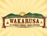 Wakarusa-Makes-First-Artist-Announcement-20010101