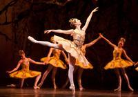 BWW-Interviews-The-National-Ballet-of-Canadas-Jillian-Vanstone-20010101