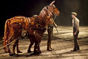 BWW TV: First Look at WAR HORSE in Toronto!