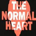 Barbra Streisand Responds to Larry Kramer on NORMAL HEART Film