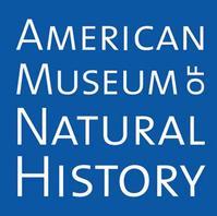 AMNH Announces Summer Public Programs