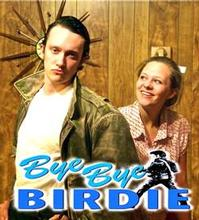 BYE-BYE-BIRDIE-Runs-June-1-17-at-Dicksons-Renaissance-Center-20010101