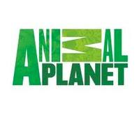 Animal Planet Announces 2012-2013 Upfront Entertainment Slate