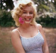 Entertainment-One-to-Produce-Marilyn-Monroe-Reality-Series-20120412