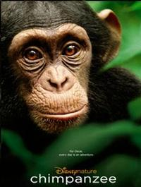 Disneynature to Extend SAVE CHIMPANZEE Initiative Due to Film's Success