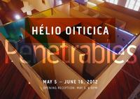 Galerie Lelong Hosts Helio Oiticica's Exhibition PENETRABLES, 5/5-6/16