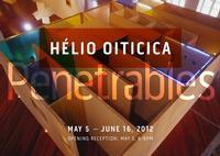 Galerie Lelong Hosts Helio Oiticica's Exhibition PENETRABLES, 5/5-6/16