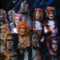STAGE TUBE: On This Day 9/10- CATS