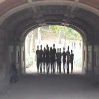 STAGE TUBE: Ogunquit's WEST SIDE STORY Cast Gets 'Cool' in Central Park