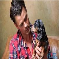 VIDEO: Kristin Bell & More Featured in JOSH DUHAMEL's RESCUE WAGGIN'