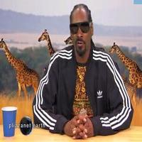 VIDEO: Watch 'Plizzanet Earth with Snoop Dogg' on Last Night's JIMMY KIMMEL