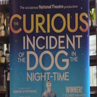 STAGE TUBE: Mark Haddon and Simon Stephens on Bringing 'CURIOUS CASE' to Broadway