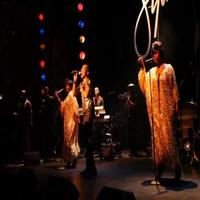 BWW TV: Inside Opening Night of MIGHTY REAL: A FABULOUS SYLVESTER MUSICAL