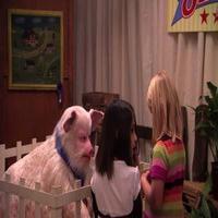 VIDEO: Watch JIMMY KIMMEL Fool Kids as 'The Amazing Talking Pig'!