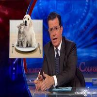 VIDEO: NRA Lifts Pet-Eating Ban in PA & the Federal Government Spoils Halloween on COLBERT!